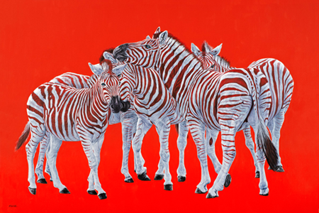 Five Zebras On Red""